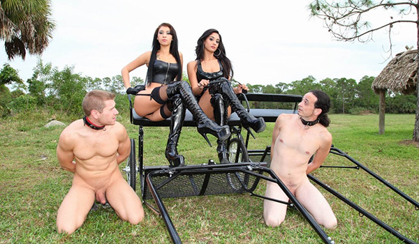 Free movies of red hot trannies