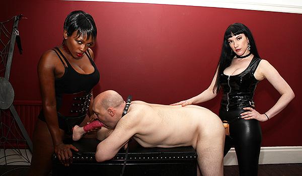 Swiss women sex pictures